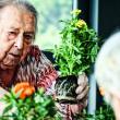 Mujer mayor plantando unas flores